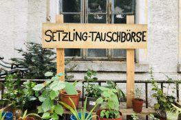 Die neue Pflanzen-Tauschbörse in Karlsruhe